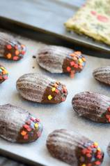 Chocolate Cranberry Madeleine Cakes