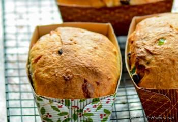 Step for Recipe - Chocolate Chip Panettone - Italian Christmas Bread